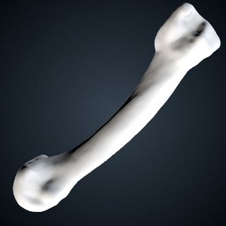 3d model of Pan troglodytes troglodytes: MT2 Right