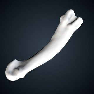 3d model of Pan troglodytes: MT2 Right