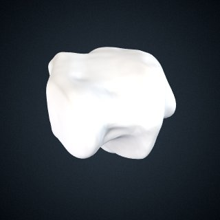 3d model of Pan troglodytes troglodytes: Cuboid Right