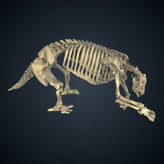 3d model of Eremotherium laurillardi