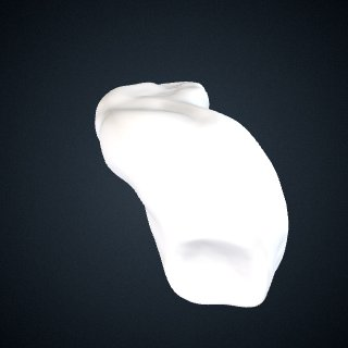 3d model of Pan troglodytes schweinfurthii: Navicular Left