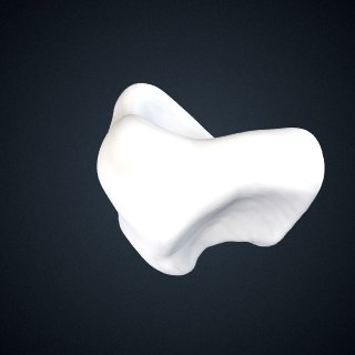 3d model of Pongo abelii: Navicular Left