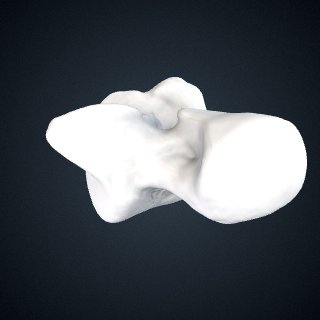 3d model of Pan troglodytes: Talus Left