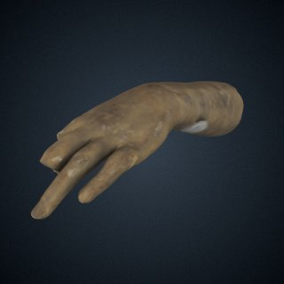 "3d model of Life Cast of Left Forearm and Hand (fragment, study for ""Greek Slave"")"