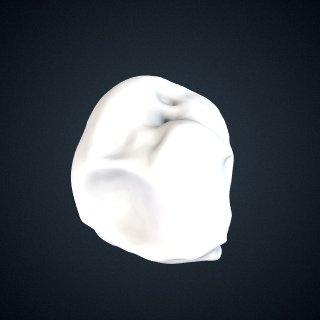 3d model of Pongo pygmaeus: Navicular Right