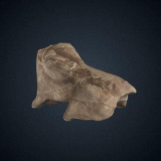 3d model of Bison figurine from La Madeleine, France