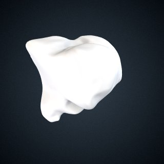 3d model of Pongo pygmaeus: Cuneiform3 Right