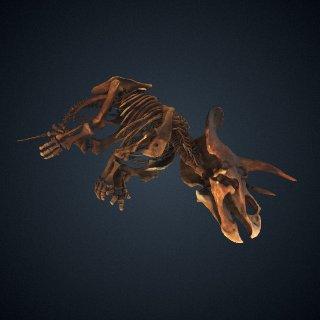 3d model of Triceratops horridus Marsh, 1889