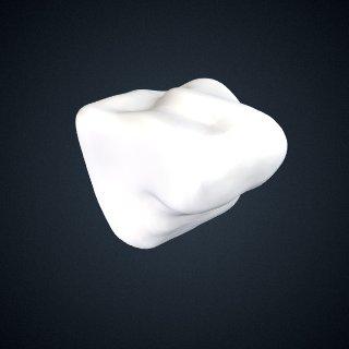 3d model of Pongo abelii: Cuneiform2 Right