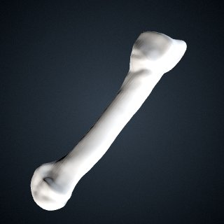 3d model of Pan troglodytes: MT5 Left